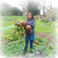 Trefacwn – biggest and best veg in St Davids?
